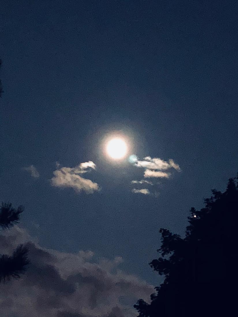 Sun in Leo,  Full Moon in Aquarius,  Lunar Eclipse07/27/18.
